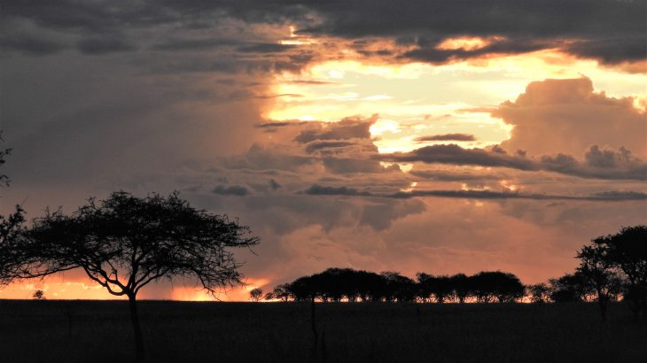 "A new study from the University of Groningen shows that the wildlife in Africa's Serengeti-Mara ecosystem is being ""squeezed"" to the core by increasing human activity."