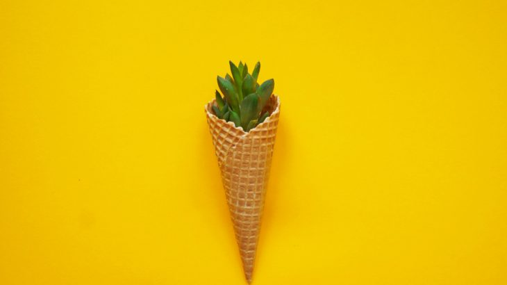 Social media sites are a great place to find gardening hacks - such as turning ice cream cones into seed starters.