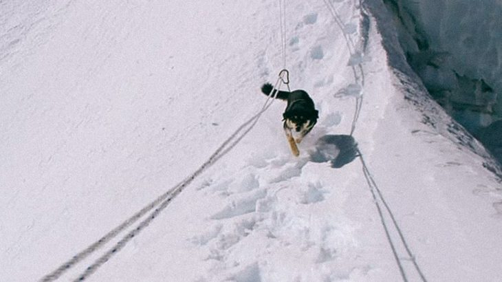 One especially skilled dog recently broke the elevation record for canine mountaineers by scaling Baruntse in the Himalayas.