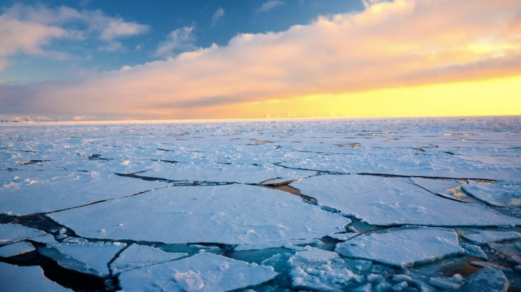 Only 20 percent of the sea ice that forms in the Russian marginal seas of the Arctic Ocean actually reaches the Central Arctic to join the Transpolar Drift.