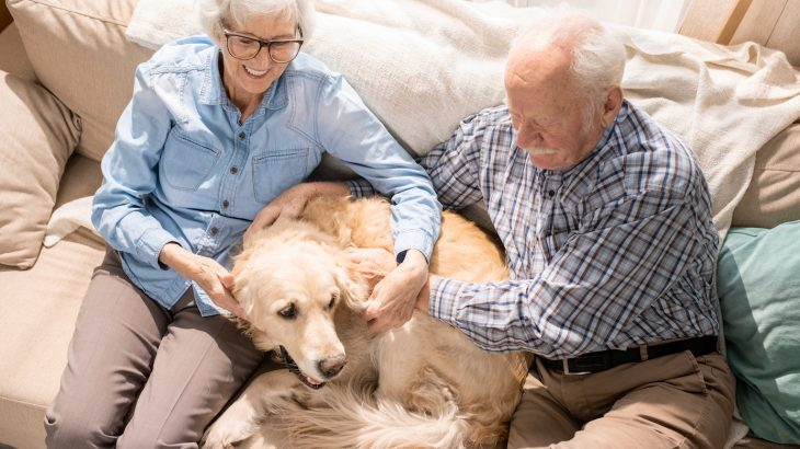 According to a new national poll, pets of all shapes and sizes can also help older adults cope with mental and physical health issues.