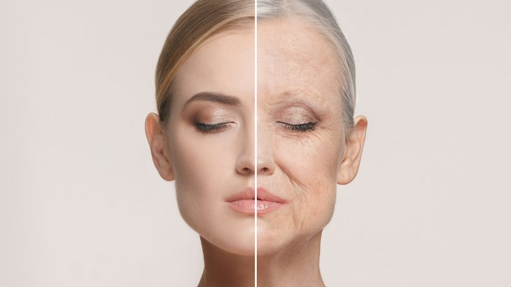 A new group of anti-aging drugs called senolytics could be made available to the public in the next two years.