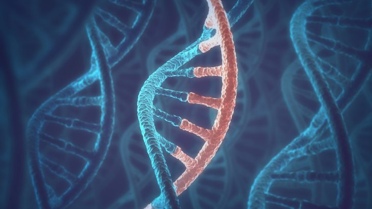 RNA and DNA may have arisen at the same time to form the building blocks for all life on Earth, according to a new study.