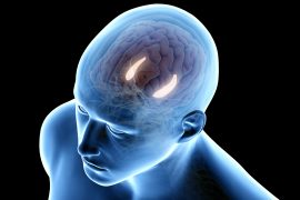 Researchers have found that stimulating the hippocampus, the part of the brain responsible for memory decline, of older adults improved memory.