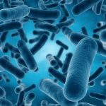 Researchers have found the underlying mechanisms that make it possible for bacteria to take in nitrous-oxide (N2O), or laughing gas as it is commonly referred to.