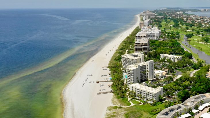Marine scientists from the University of Southern Florida have determined that ocean circulation caused the severe red tide of 2018.
