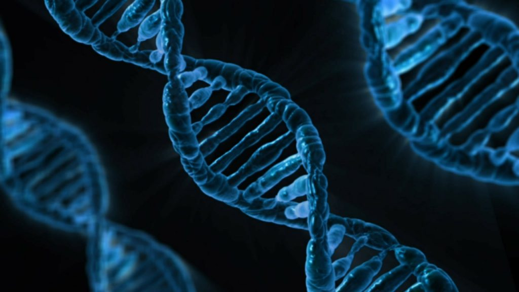 An artistic rendering of the double helix of DNA. 3 Blue strands of DNA on a black background.