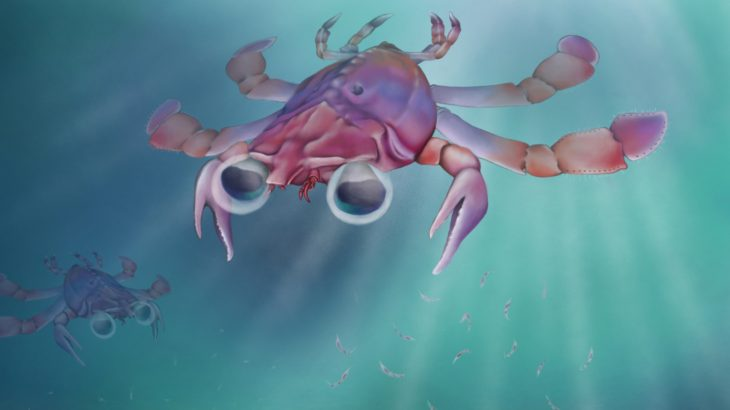 "An arthropod specimen dating back to the mid-Cretaceous Period is being hailed the ""platypus of the crab world"" for its unusually small size."