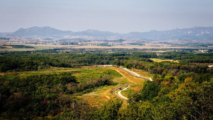 Before the Korean War, much of the DMZ was agricultural land but now has been left untouched for 65 years, during which time wild ecosystems have rebounded.