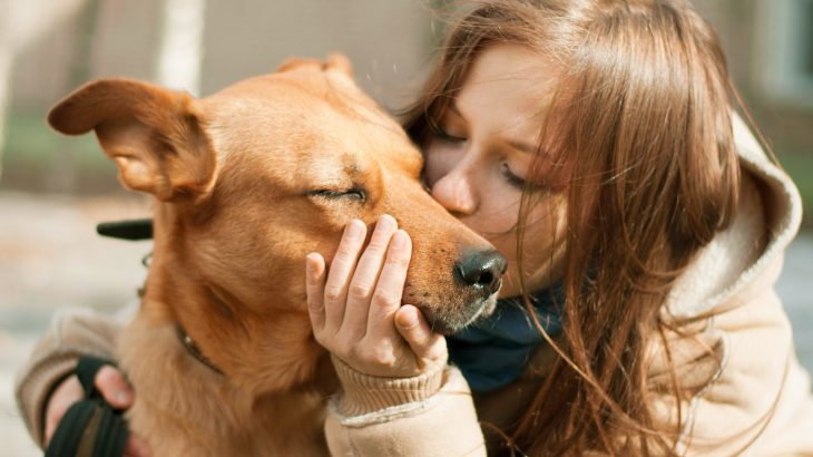 A new study has found that being overly affectionate with our dogs may unwittingly lead to the spread of antibiotic-resistant bugs.