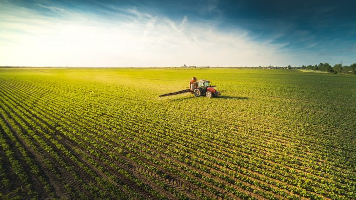 There are many potential climate change mitigation strategies that could be implemented to reduce greenhouse gasses, but at what cost to food security?