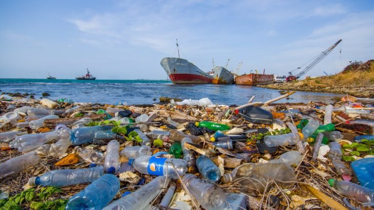 Environmental pollutants wash ashore near the Panama Canal. A new study has linked pollution to impaired fertility. (Fotos593 / Shutterstock.com)