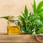 A new study from the Icahn School of Medicine at Mount Sinai indicates that cannabidiol (CBD) can make it easier for people to overcome addiction.