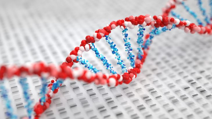 Researchers in Toronto have identified genes that are unique to humans and may help to explain our very existence.