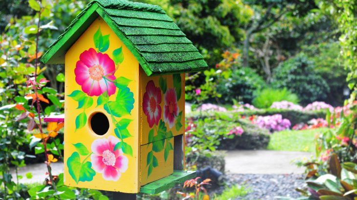 Here are some tips on how to restore or reconstruct a home habitat to enjoy the pleasure of wildlife encounters and help non-humans.