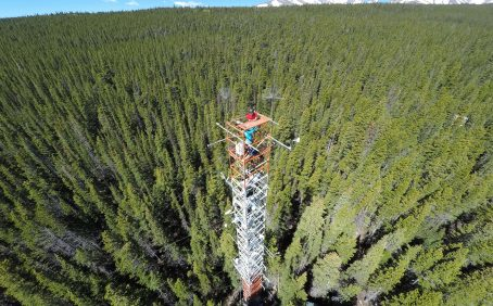 Researchers from the University of Utah have found a way to monitor GPP and photosynthesis in evergreen forests using satellites.