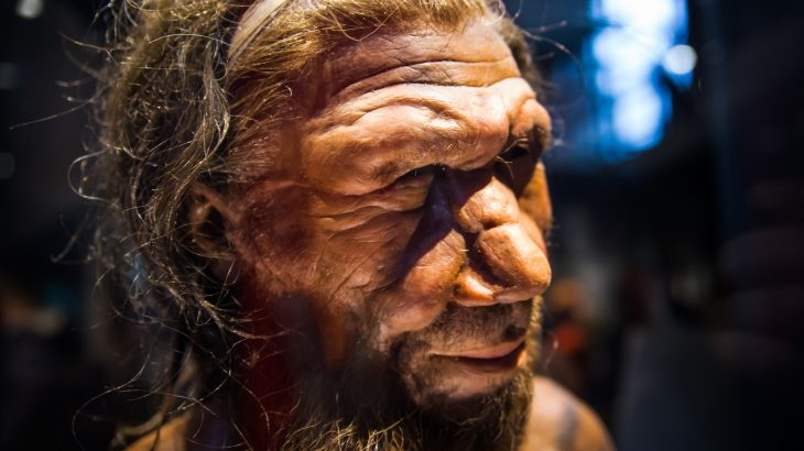The last Neanderthals died off around 40,000 years ago after migrating from Africa to Europe, and there have been many theories as to what led to their demise.
