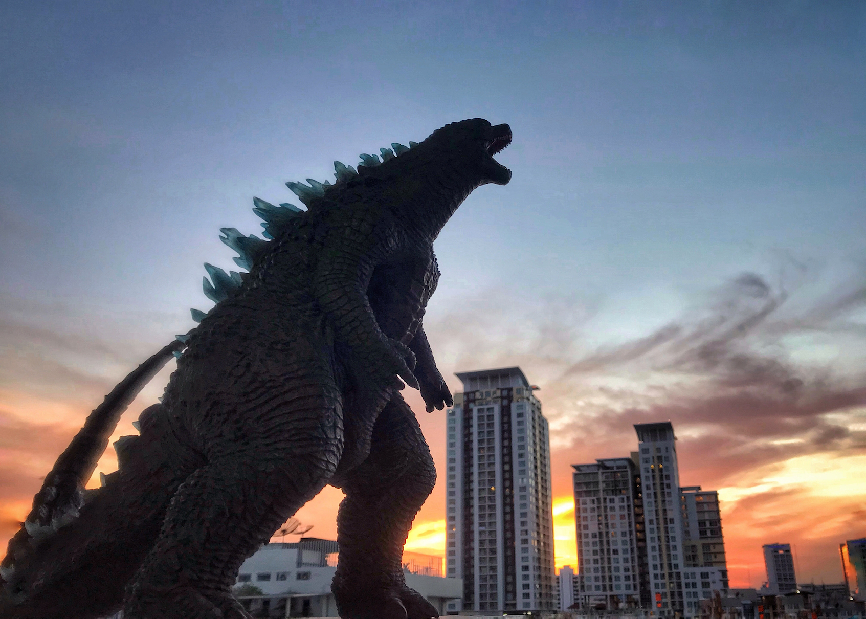 Godzilla has evolved 30 times faster than any other animal on ...