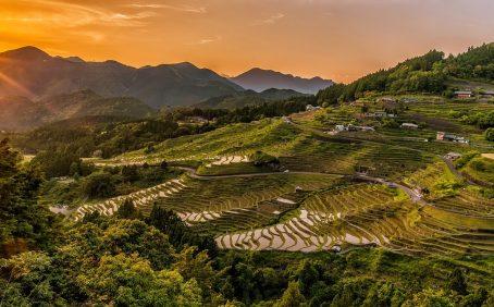terracing, terrace farming
