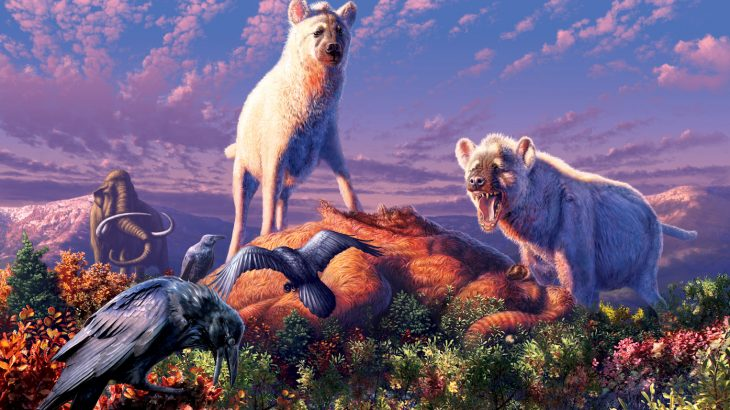 A new study has revealed that hyenas once dwelled in a much different environment than the African and Asian ecosystems where they live today.