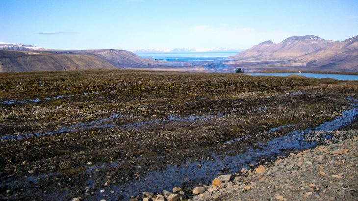 According to a new report, permafrost in the Canadian Arctic is thawing 70 years sooner than previously predicted.