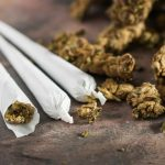 A new study has found that marijuana use has both increased and substantially shifted away from the illegal market since retail sales began in 2014.