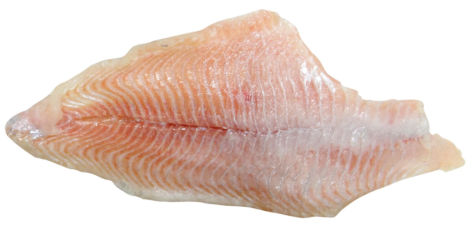 A catfish filet