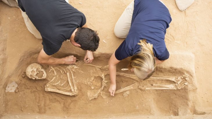Scientists have retrieved and analyzed genome-wide data from people who lived during the Bronze and Iron Age in the ancient port city of Ashkelon.