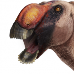 A newly described species and genus of duck-billed dinosaur have been identified from a skull that was discovered in Texas.
