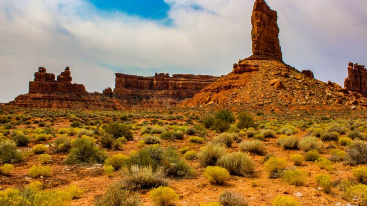 Under the Trump administration, the Bureau of Land Management has turned over a new leaf, giving its critics much of what they asked for and steering the agency in a new direction.