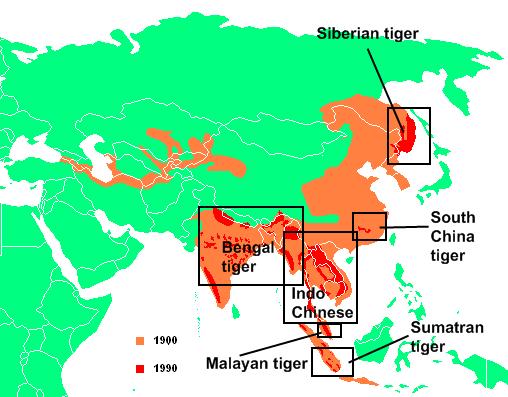 Tiger range