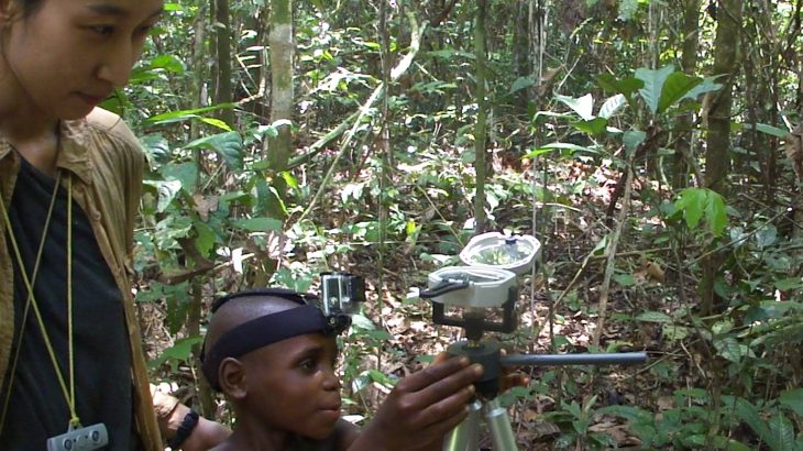 The Mbendjele BaYaka people, a hunter-gatherer society living the Republic of Congo, can accurately orient themselves in the dense rainforest in which they forage and hunt.
