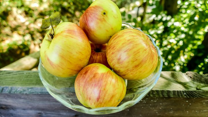 Bacterial communities are much more diverse and balanced in organic apples, which could make them healthier, tastier, and better for the environment.