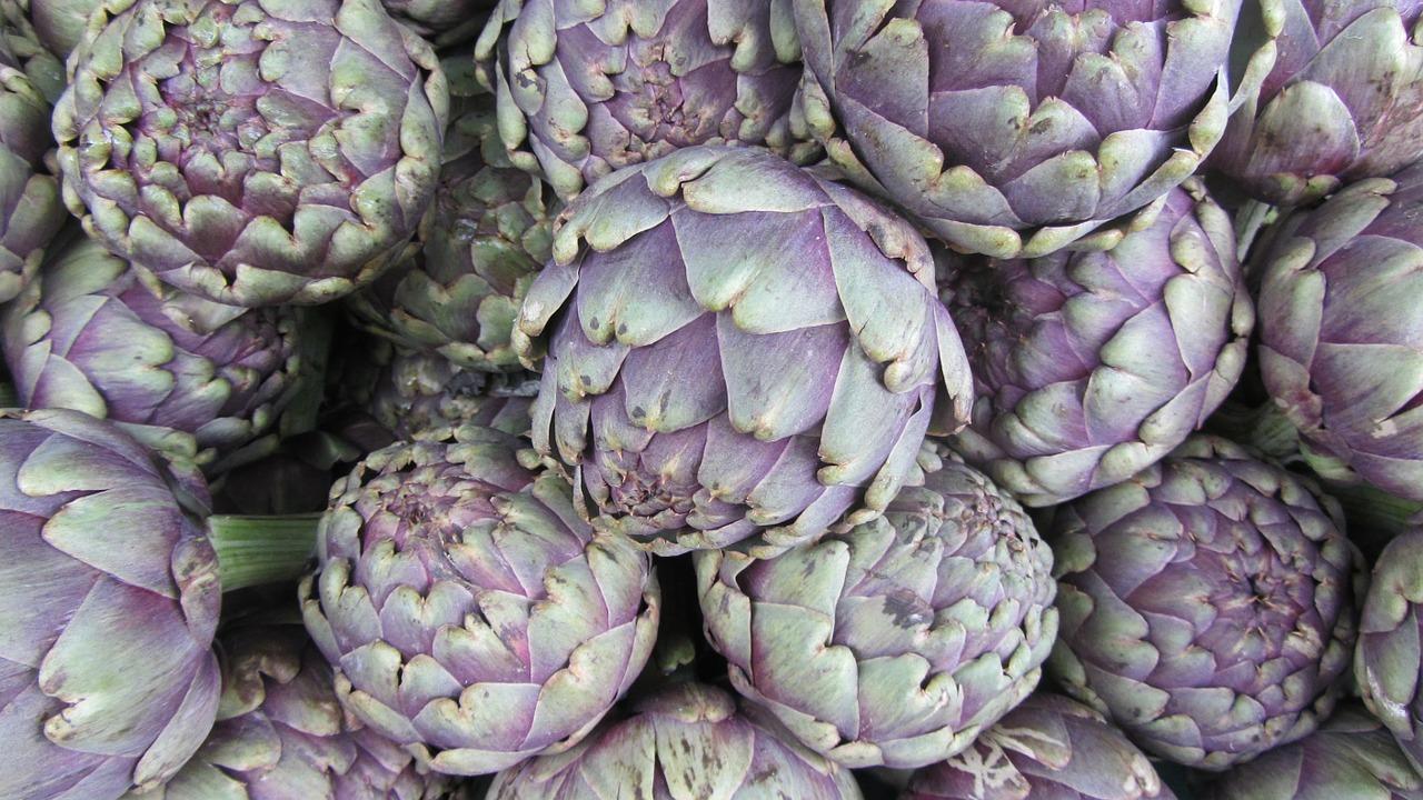 edible flowers, artichoke