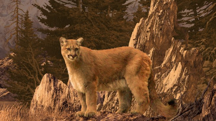 Cougars, not wolves, are the main predator driving the movements of Elk across Yellowstone National Park, new research has revealed.