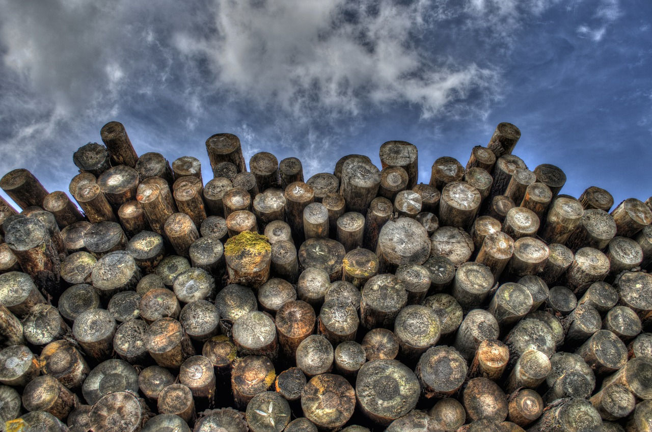 logging, natural resources