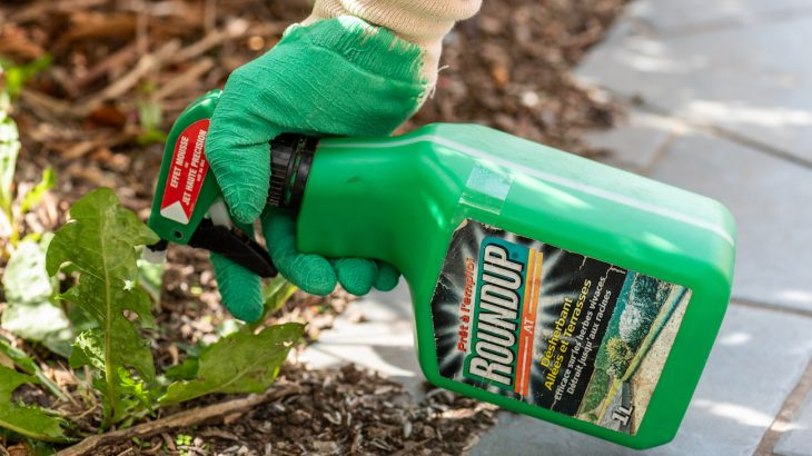 Companies are now being told to remove any warning language from labels on products that contain the pesticide glyphosate.