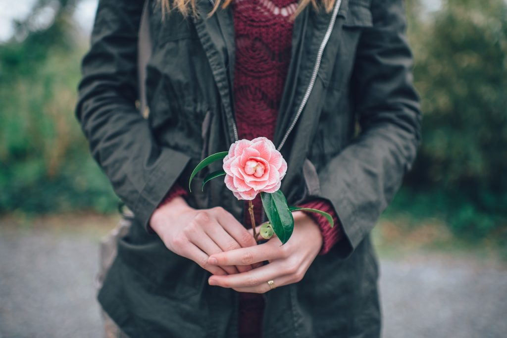 person holding rose