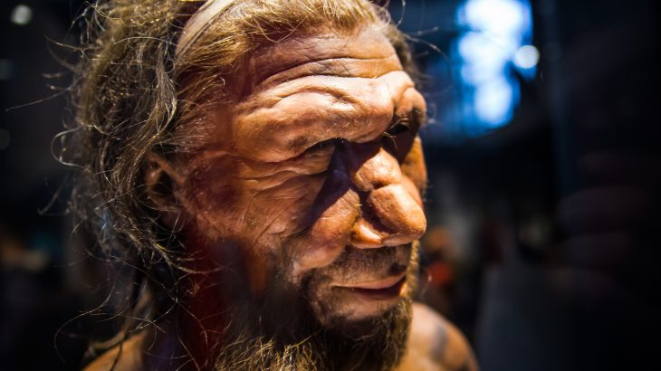 "According to new research from the Washington University, Neanderthals commonly suffered from ""swimmer's ear"" due to abnormal bone growths in the ear canal."