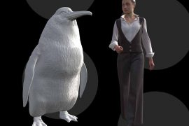 Fossil leg bones belonging to a newly described species of giant penguin dating back to the Paleocene Epoch were discovered in New Zealand.