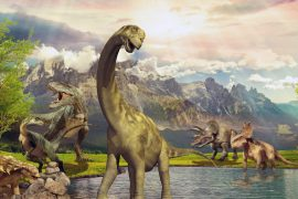 Increasing oxygen levels in North America gave rise to dinosaurs 215 million years ago, according to a new study.