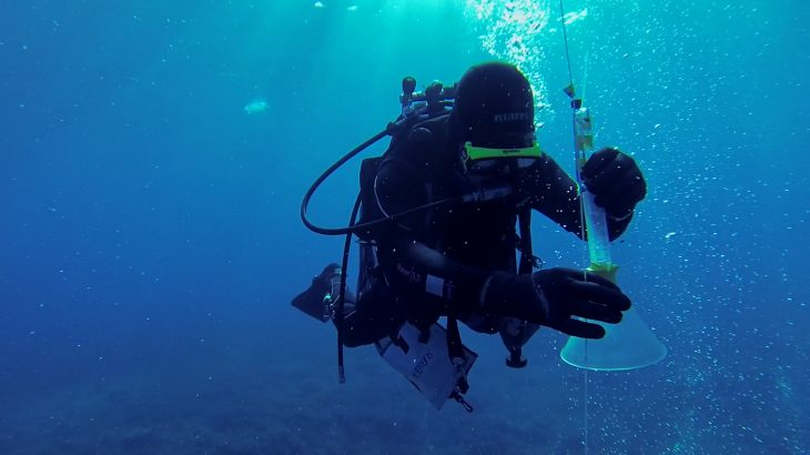 Some scientists believe that a feasible strategy for climate change mitigation is to inject carbon dioxide (CO2) deep into the seafloor.