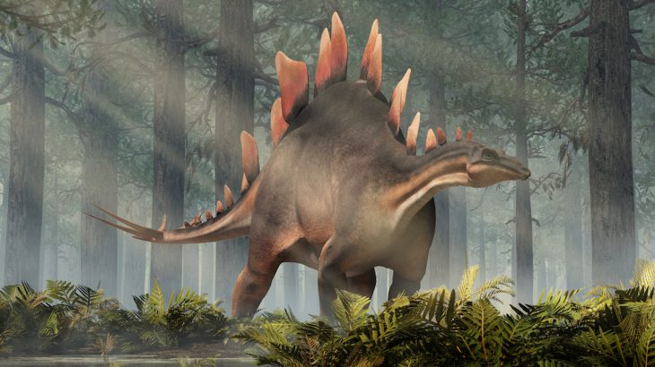 In a new discovery, paleontologists have identified a new species of stegosaurus, and it's the oldest of its kind ever found.