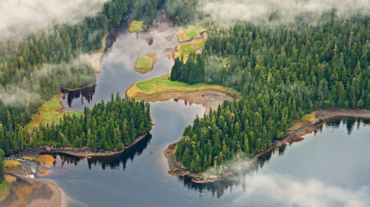According to a new report in the Washington Post, President Trump is now pursuing weaker logging, mining, and road construction regulations in Alaska's Tongass National Forest.
