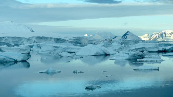 Biological processes far off the coast of Antarctica in the Southern Ocean are the most important factors in determining how the ocean absorbs carbon dioxide.