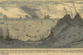 An old drawing of a cross section of the Atlantic ocean.