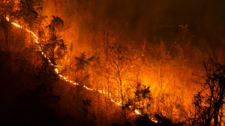 A forest fire burns in northern Thailand. Massive wildfires are sparking up at unusual times of the year growing quickly out of control in what is becoming the new normal.
