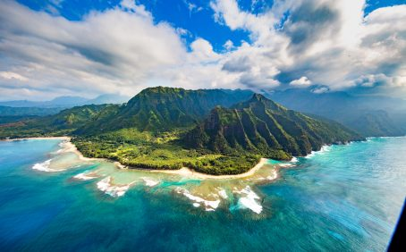 Hawaii was the one place surveyed in a recent study that had a higher number of plant extinctions than South Africa.