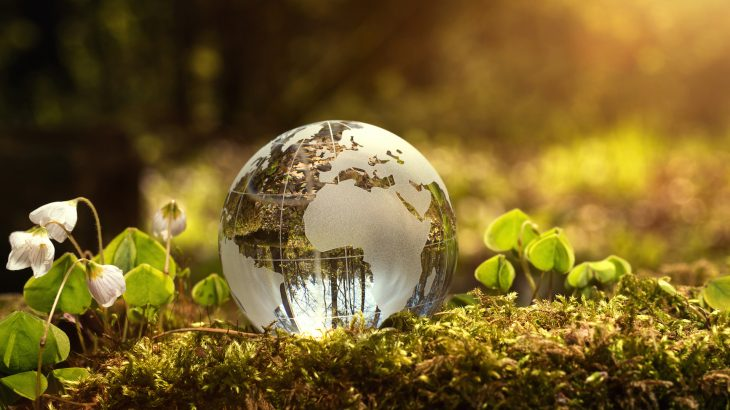 According to a team of environmental law scholars, major statutory reform may not be entirely necessary to address the global climate change crisis.