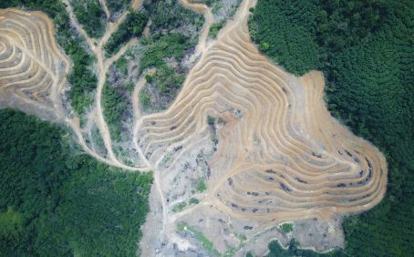 The California 'Tropical Forest Standard' involves using corporate money to slow tropical forest destruction. It's already controversial.